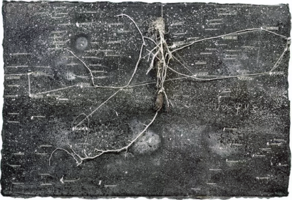 constellation kiefer