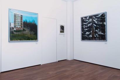 web_liron_vue-exposition-luxembourg4.jpg